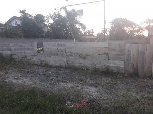 Terreno murado e aterrado de frete para a rodovia - Foto 3