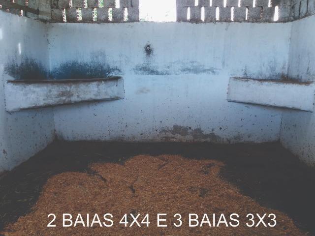 Sitio, Chácara - Foto 8