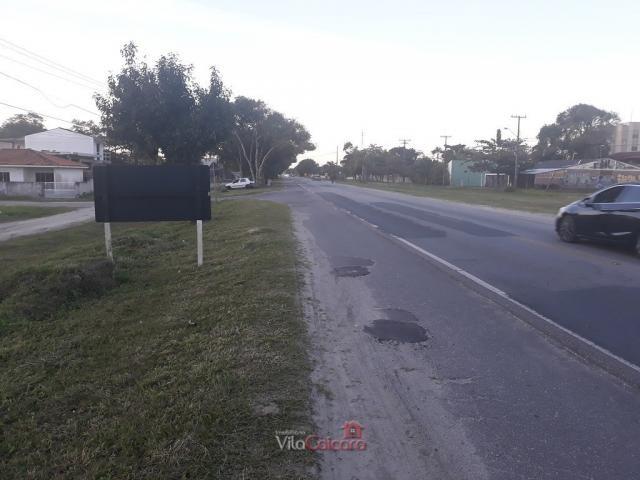 Terreno murado e aterrado de frete para a rodovia - Foto 12