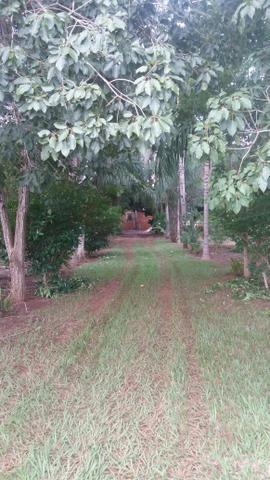 Chacara 2 hectares lazer - Foto 4