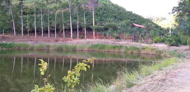 Vendo Sitio - 20.000m² - Córrego da Puaia/Colatina - 4km do bairro Columbia - Foto 2
