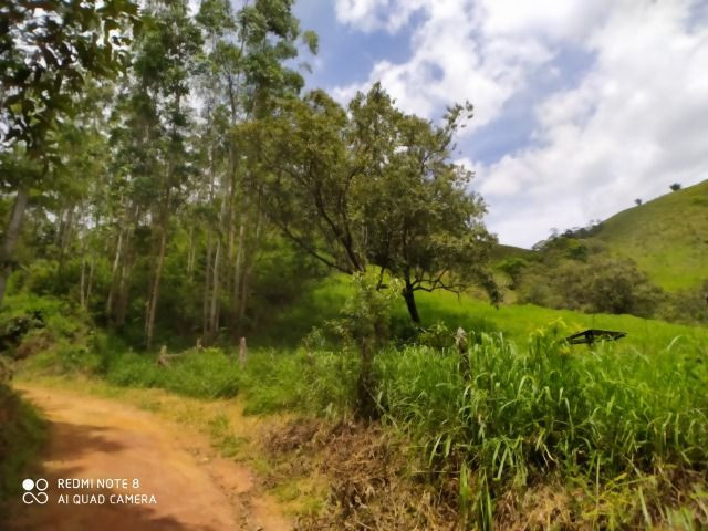 Vendo Fazenda em Rio da Prata - Distrito de Guarapari - Foto 10