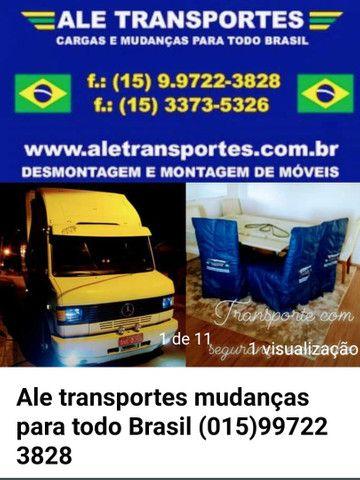 Ale transportes mudanças para todo Brasil
