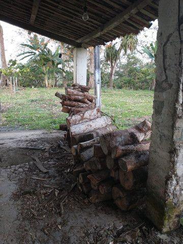 Fazenda  área 100 ha  lavoura maior parte de cacau,  Casa 4/4  escriturada - Foto 11