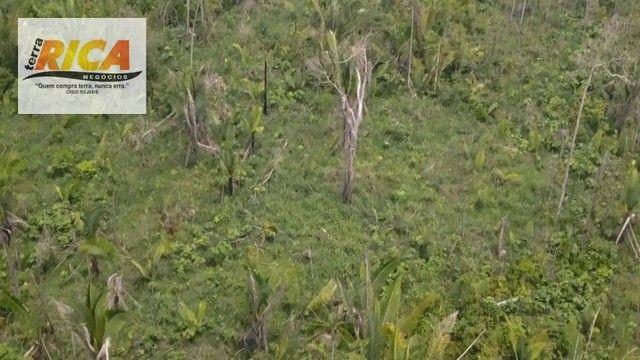 Fazenda à venda, com 750 hectares na Área Rural de Porto Velho/RO - Foto 8