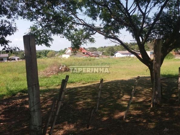 Terreno à venda em Pinheiro machado, Santa maria cod:11048