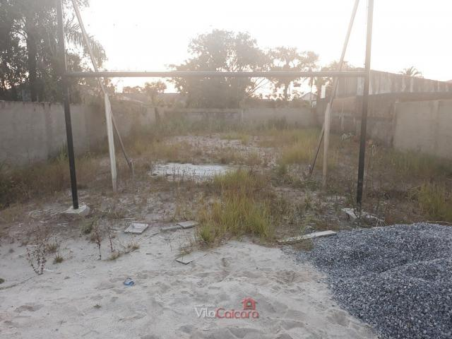 Terreno murado e aterrado de frete para a rodovia - Foto 7