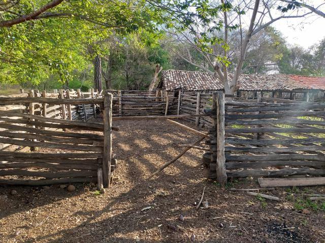 Vende-se uma fazenda - Foto 11