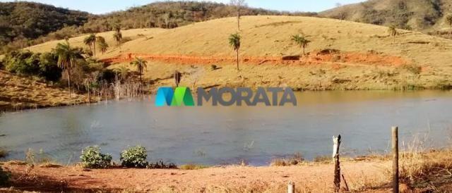 FAZENDA - 334 hectares - PARÁ DE MINAS (MG) - Foto 6