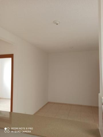 Apartamento para alugar com 2 dormitórios em Jardim nunes, Sao jose do rio preto cod:L7294 - Foto 2