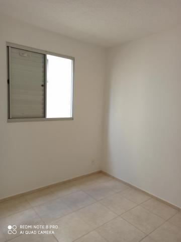 Apartamento para alugar com 2 dormitórios em Jardim nunes, Sao jose do rio preto cod:L7294 - Foto 12