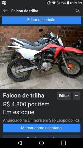 FALCON DE TRILHA