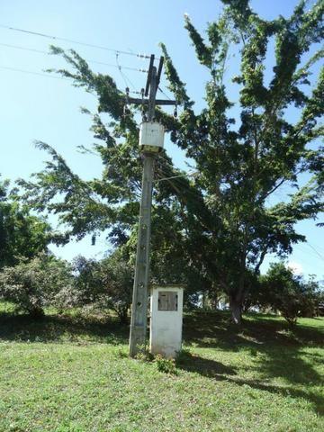 Vendo Fazenda em Ceará Mirim - Foto 4