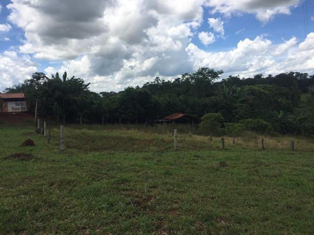 Fazenda com 5,5 Alqueires, Toda Formada, Pontalina Goiás, - Foto 4