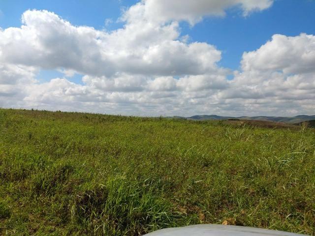 Fazenda com 180 Hectares a 8 km da Pista de Cortês-PE - Foto 6