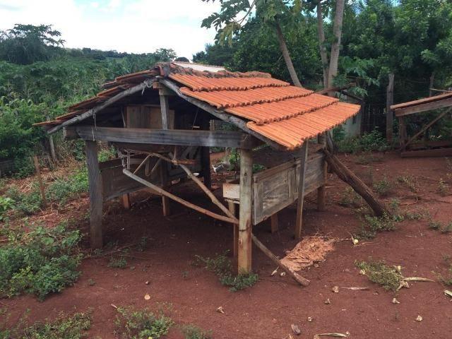 Fazenda com 5,5 Alqueires, Toda Formada, Pontalina Goiás, - Foto 13
