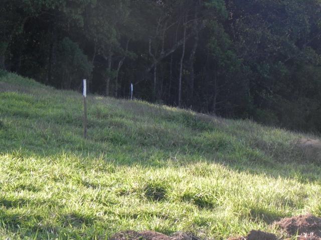 Agt-ótimo terreno para construir chacará na região de Mairiporã - Foto 14