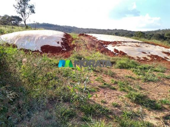 FAZENDA - 213 hectares - ONÇA DO PITANGUI (MG) - Foto 16
