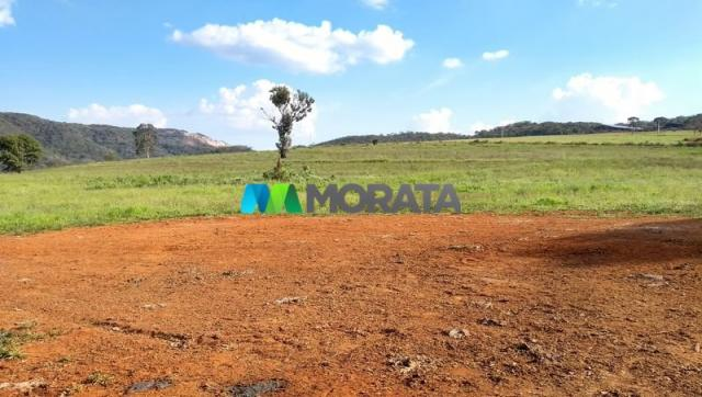 FAZENDA - 213 hectares - ONÇA DO PITANGUI (MG) - Foto 15