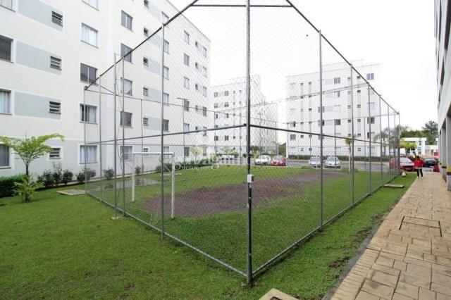 Apartamento para alugar com 2 dormitórios em Pinheirinho, Curitiba cod:13924001 - Foto 15