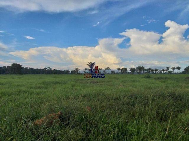 Fazenda à venda, por R$ 2.645.000 - Zona Rural - Machadinho D'Oeste/RO - Foto 6