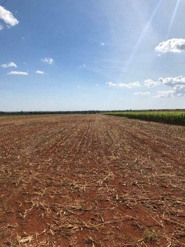 Fazenda Extra 33,5 Alqueires   30 na lavoura   Oport. Única