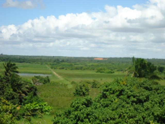 Vendo Fazenda em Ceará Mirim - Foto 13