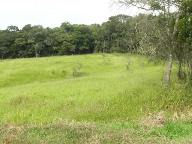 Agt-ótimo terreno para construir chacará na região de Mairiporã - Foto 8