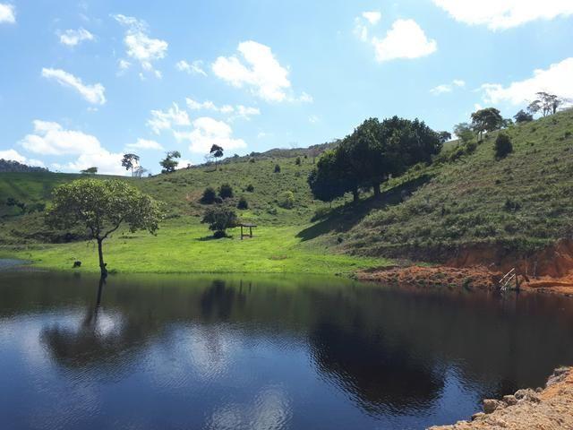 Venda ou arrendamento Excelente Fazenda 540 tarefas em Ubaira - Foto 8