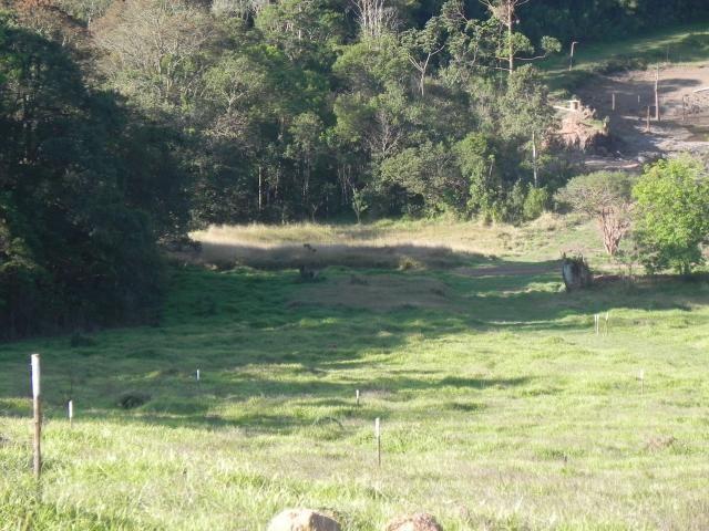 Agt-ótimo terreno para construir chacará na região de Mairiporã - Foto 12