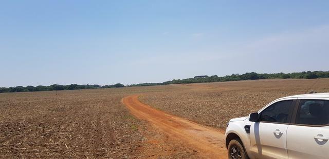 Fazenda em Rio Verde 28 alqueires   170 mil   Valor de Oportunidades - Foto 3