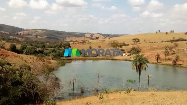 FAZENDA - 334 hectares - PARÁ DE MINAS (MG)