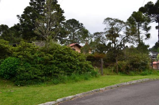 Terreno à venda, 1049 m² por R$ 450.000,00 - Villágio - Gramado/RS - Foto 2