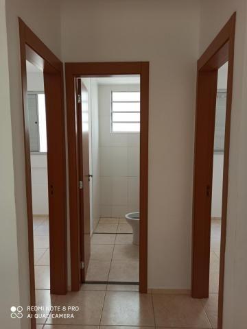 Apartamento para alugar com 2 dormitórios em Jardim nunes, Sao jose do rio preto cod:L7294 - Foto 3