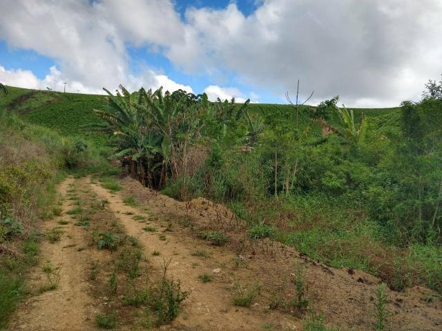 Fazenda com 180 Hectares a 8 km da Pista de Cortês-PE - Foto 7