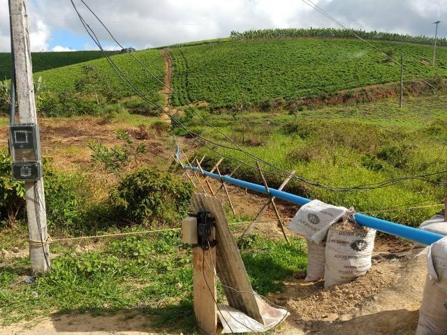 Fazenda com 180 Hectares a 8 km da Pista de Cortês-PE - Foto 13