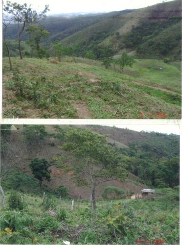 Fazenda 97 Alqs Na Região do Vale do Paraíba SP Negocio de oportunidade - Leia o anúncio - Foto 4