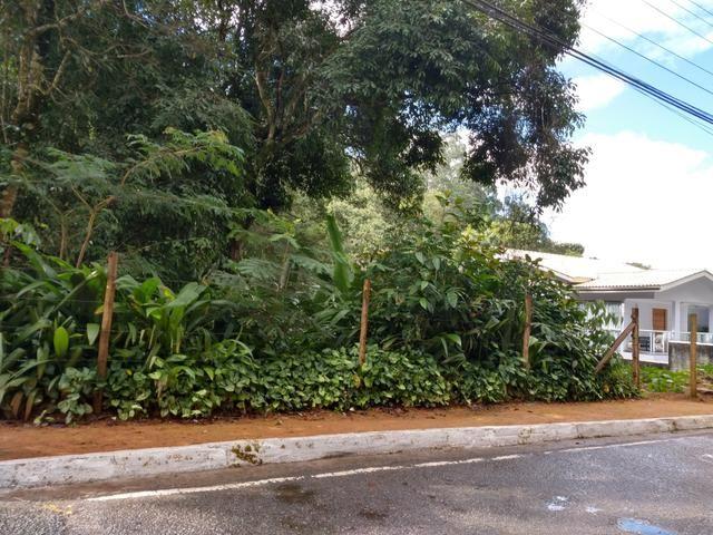 Lote 1.300m2 na Avenida Principal de Santa Isabel em Domingos Martins - Foto 5