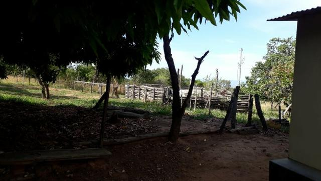 Sitio 16.8 Hac/Permuta Por Imovel Em Jequitai Ou Montes Claros - Foto 3
