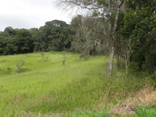 Agt-ótimo terreno para construir chacará na região de Mairiporã - Foto 9