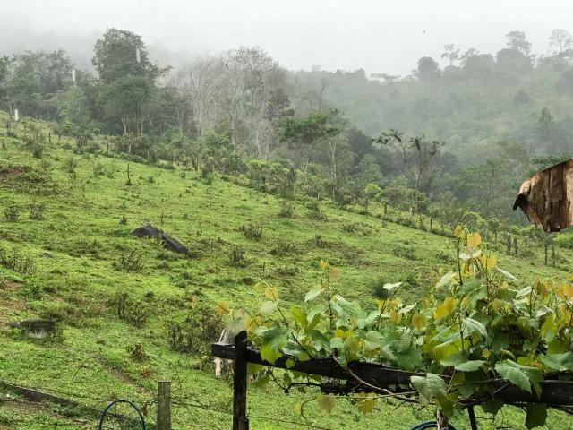 Vende-se Fazenda no Boqueirão de Itajuru - BA - Foto 3