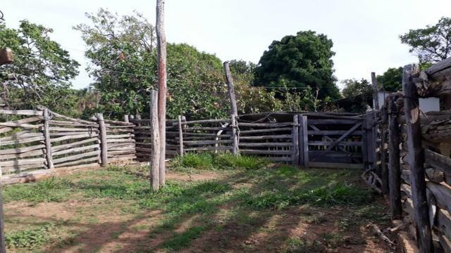 Sitio 16.8 Hac/Permuta Por Imovel Em Jequitai Ou Montes Claros - Foto 17
