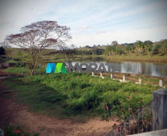 FAZENDA - 329,12 hectares - BOM SUCESSO (MG) - Foto 4