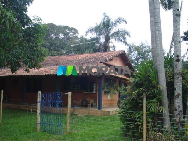 FAZENDA CAFÉ - 176,66 hectares - REGIÃO MACHADO (MG) - Foto 10