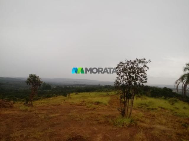 FAZENDA A VENDA - 143 hectares - BOM DESPACHO (MG)