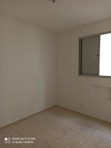Apartamento para alugar com 2 dormitórios em Jardim nunes, Sao jose do rio preto cod:L7294 - Foto 8