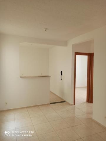 Apartamento para alugar com 2 dormitórios em Jardim nunes, Sao jose do rio preto cod:L7294