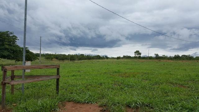Fazenda Município de Jau - TO com 35 alqueires