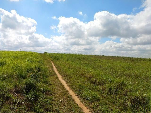 Fazenda com 180 Hectares a 8 km da Pista de Cortês-PE - Foto 14