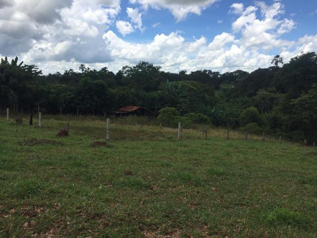 Fazenda com 5,5 Alqueires, Toda Formada, Pontalina Goiás, - Foto 9